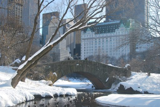winter in NYC, USA