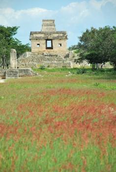 Templo de las 7 muñecas - Dzibilchaltun (15)