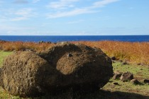 tear drop Moai at Akahanga (6May12)