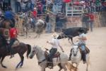 bull at Feria Mama, Mexico