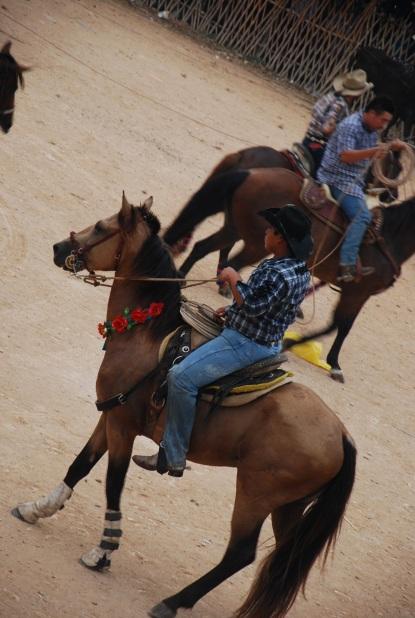 flower horse, Feria Mama, Mexico