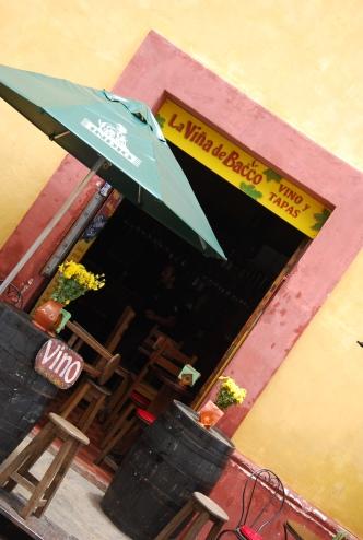 Vina de Bacco, San Cris, Mexico