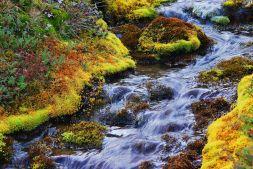 river, Chile