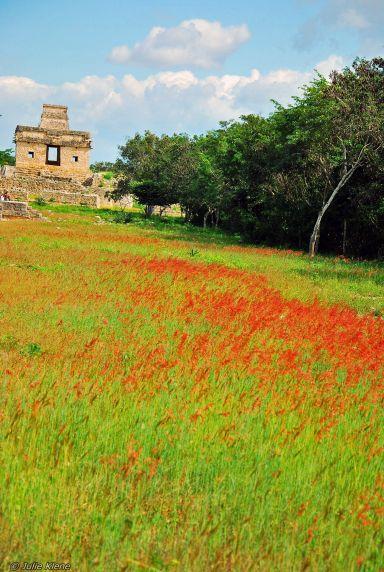 Dzibilchaltun ruins, Mexico