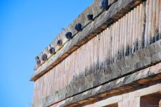 Temple of Turtles, Uxmal, Mexico