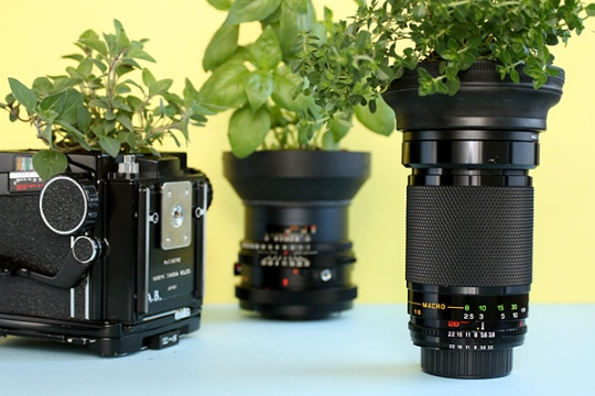 planted used camera (photo credit : google)