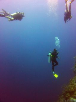 Raul diving, Belize