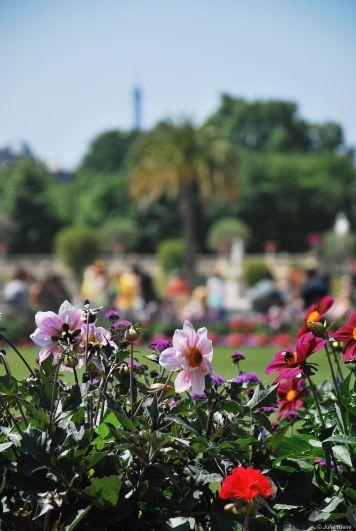 Jardin du Luxembourg, France