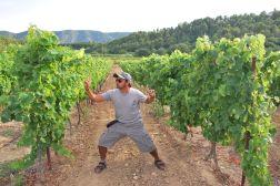 Raul & vineyard, France