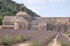 Sénanque Abbaye, France