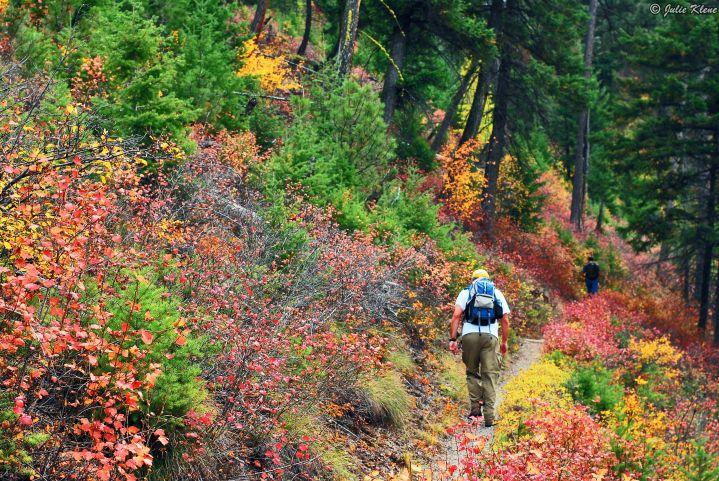 Mt. Sentinel hike, Missoula, MT, USA