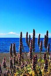 in Frutillar, Chile