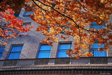 downtown Portland, OR, USA