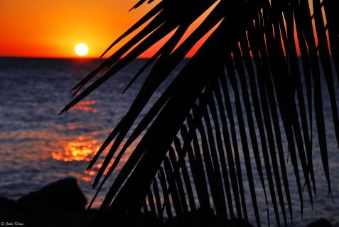 sunset in Key West, FL, USA