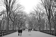 The Mall in Central Park, NYC, USA