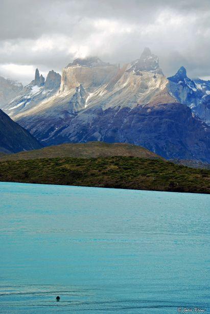 Cuernos, Pehoe & duck, TdP, Chile