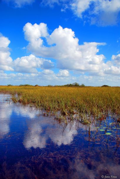 Everglades ride, Miami, FL, USA