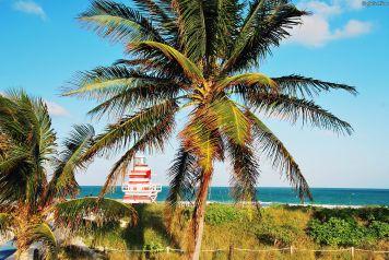 South Pointe Park, Miami, FL, USA