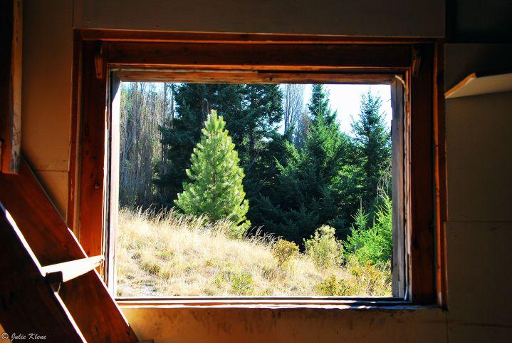 window into the wild, San Carlos de Bariloche, Argentina
