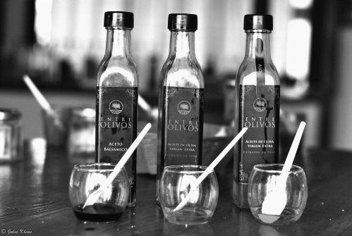 olive oil-tasting, Maipu, Mendoza, Argentina