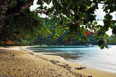 Pousso beach, Ilha Grande, Brazil