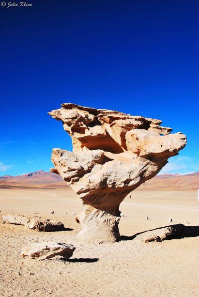 Stone Tree, Uyuni Salt Flats, Bolivia