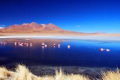 Laguna Canapa, Uyuni Salt Flats, Bolivia