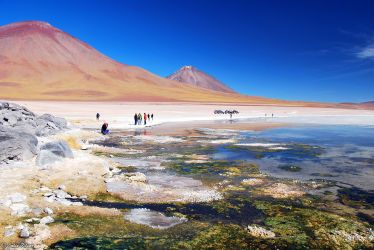 Laguna Blanca, Uyuni Salt Flats, Bolivia