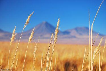 Licancabur Volcano, San Pedro de Atacama, Chile