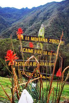 Cocora Valley, Salento, Colombia