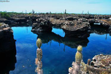 lava tunels, Galapagos islands, Ecuador