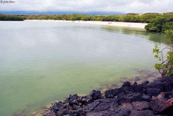 Tortuga Bay, Galapagos islands, Ecuador