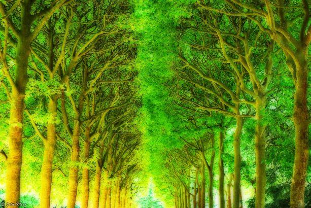 Parc de Sceaux, Paris