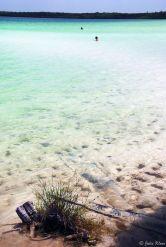 Kaan Luum Lagoon, Tulum, Mexico