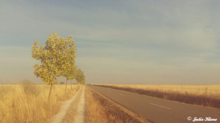 El Camino Day 23, to Mansilla, Spain