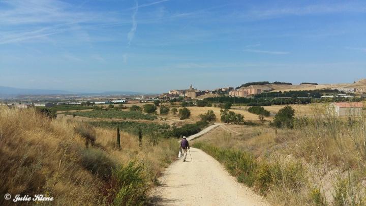 El Camino Day 11, to Los Arcos, Spain