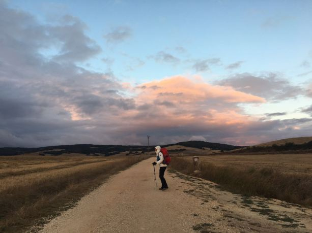 El Camino Day 16, to Cardeñuela, Spain