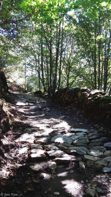 El Camino - Day 30, to La Faba, Spain