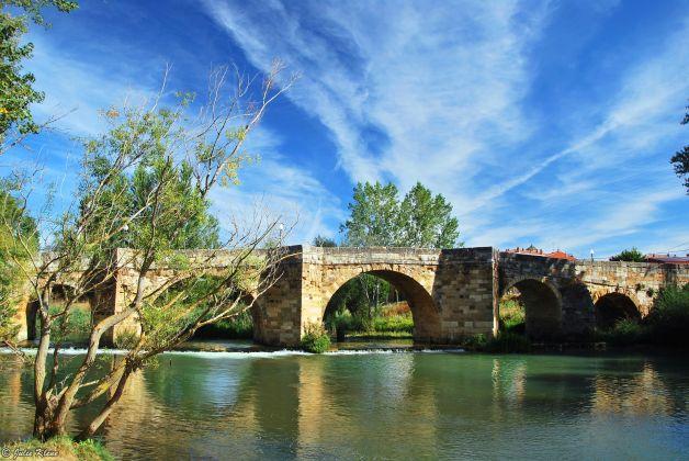 El Camino - Day 22, to Bercianos del Camino, Spain