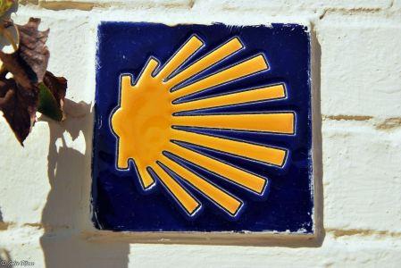 El Camino - Day 8, to Obanos, Spain