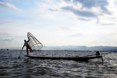 Lac Inle, Myanmar