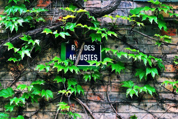 Confinement J40, Paris, France